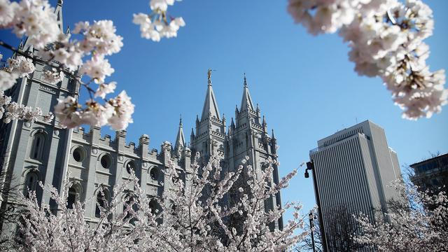 Salt Lake Temple with Blossoms